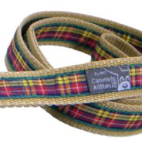 DOG LEAD - AUTHENTIC SCOTTISH BUCHANAN TARTAN